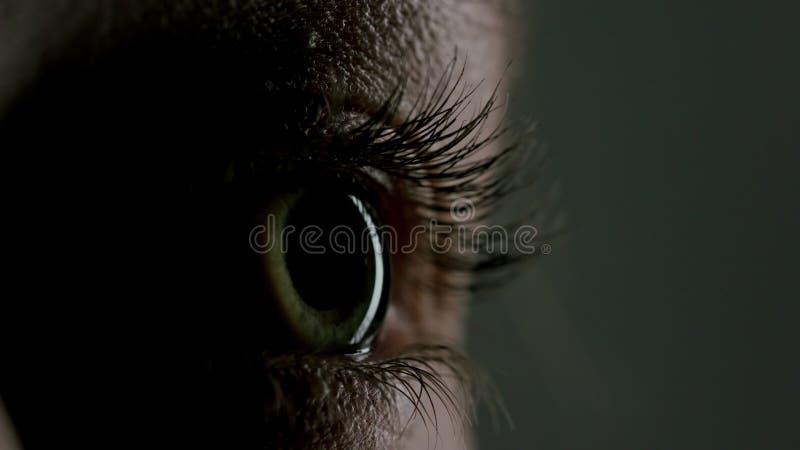 Bel oeil bleu en gros plan photo stock