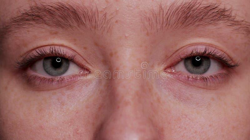 Bel oeil bleu en gros plan photographie stock