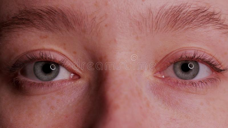 Bel oeil bleu en gros plan images stock
