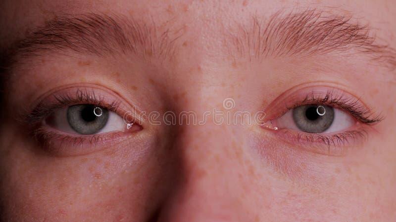 Bel oeil bleu en gros plan photographie stock libre de droits