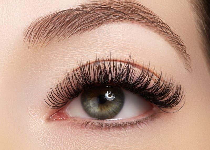 Bel oeil femelle avec de longs cils extrêmes, maquillage noir de revêtement Maquillage parfait, longues mèches Yeux de mode de pl photos stock