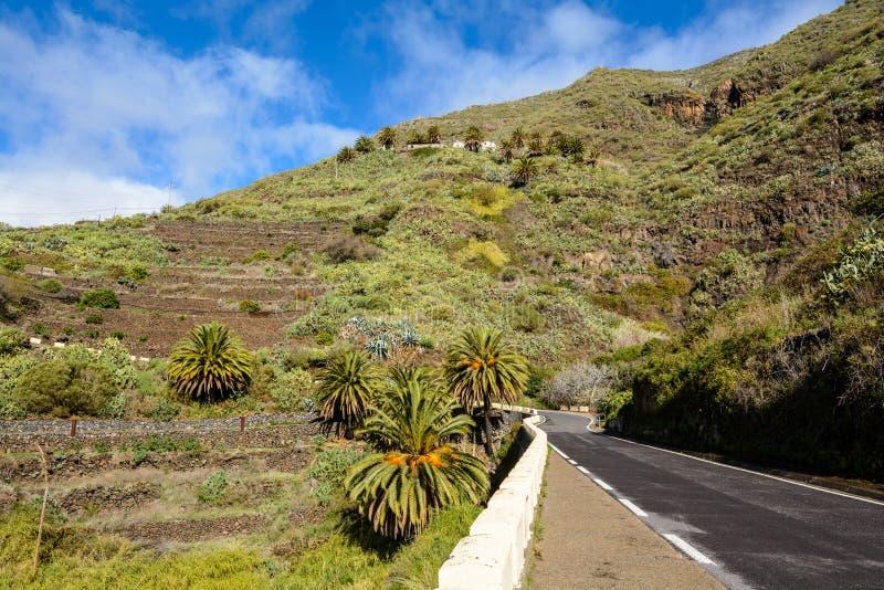 Bela estrada nas montanhas Masca Tenerife foto de stock royalty free