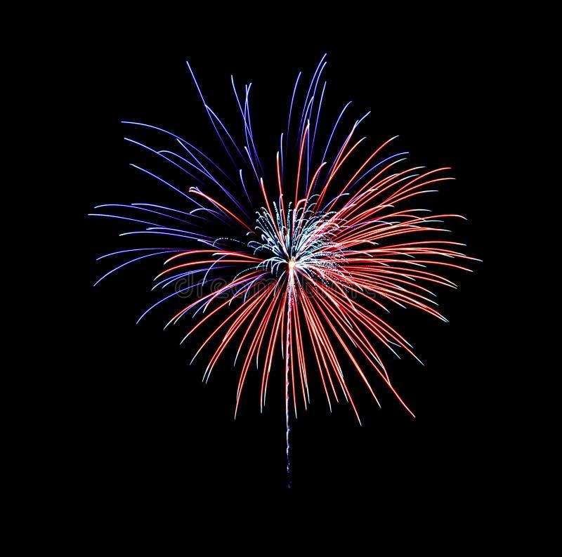 Bela fogos de artifício azuis e vermelhos a explodir no céu noturno, isolados sobre fundo negro fotos de stock royalty free