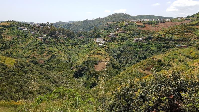 A bela natureza das montanhas está abundantemente sobrecarregada com vegetação verde nas proximidades da cidade de Skikda Argélia fotos de stock