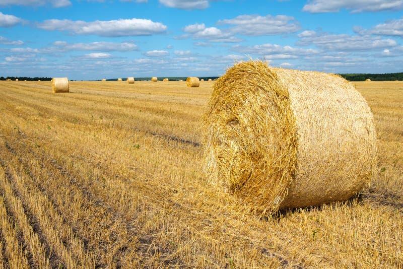Bela paisagem rural com um rolo de feno no primeiro plano fotografia de stock royalty free