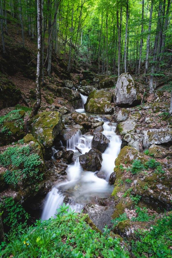Bela river, Balkan Mountain royalty free stock image