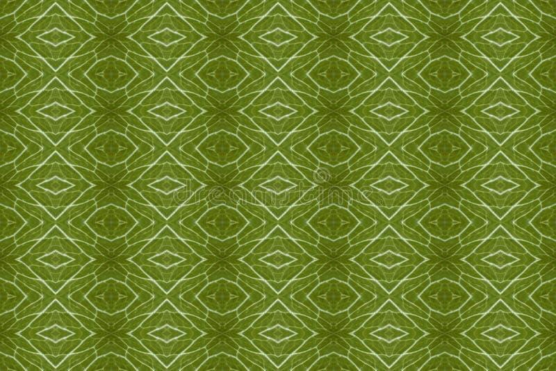 Belagd med tegel modell från en närbild av ett grönsallatblad vektor illustrationer