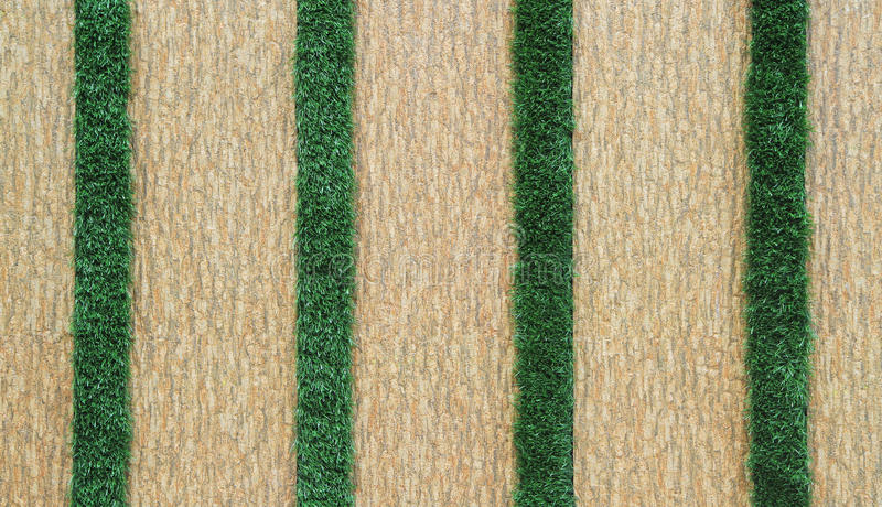 Belagd med tegel vägg med grönt gräs royaltyfri bild