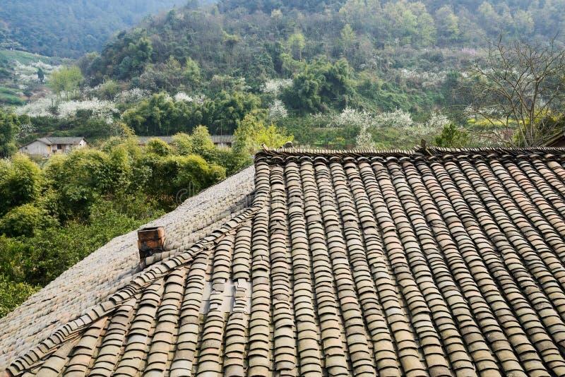 Belagt med tegel tak av det åldriga lantbrukarhemmet, i att blomstra berget av den soliga spien arkivbild