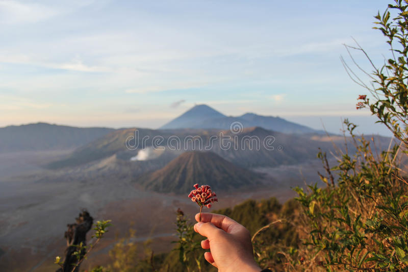 Belamente montanha de Bromo imagens de stock