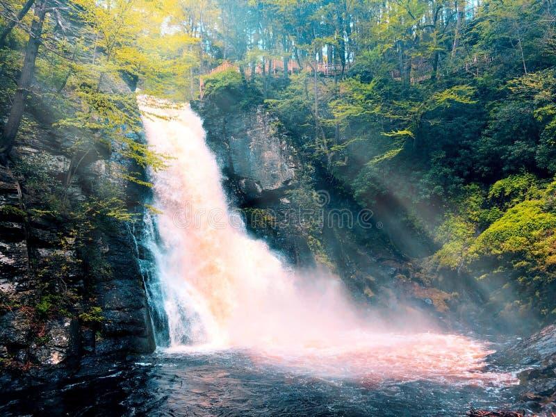Belangrijkste Bushkill valt water die snel stromen royalty-vrije stock afbeeldingen