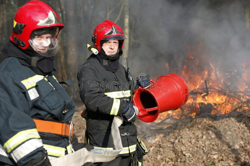 Firefighters extinguish forest fire stock images