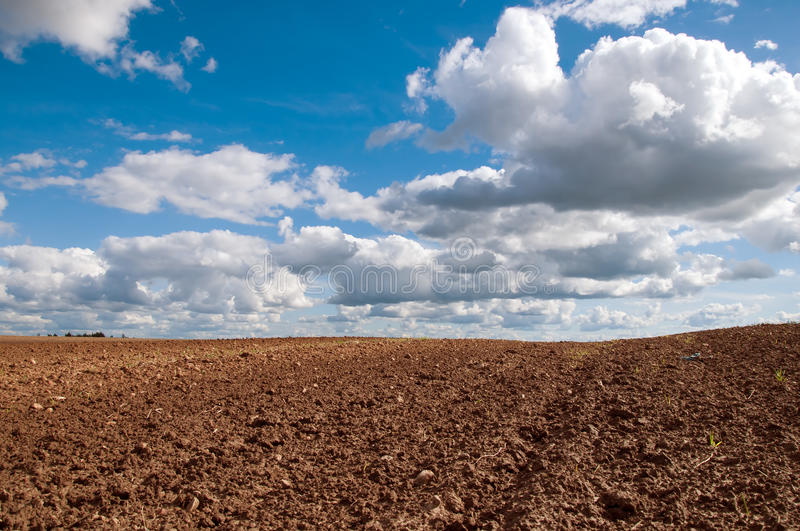 Belarus spring field blue sky and clouds landscape stock photos