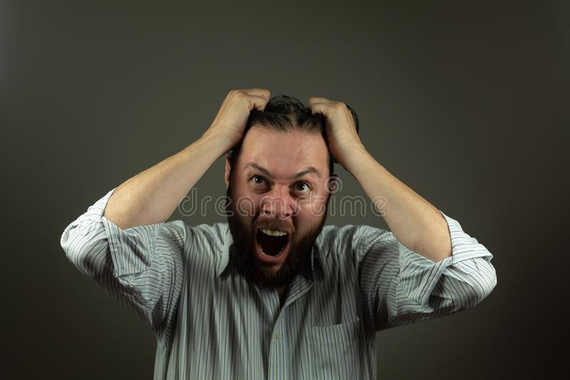 belastad aff?rsman Caucasian man som yeling och drar hår Ilsken affär royaltyfria bilder