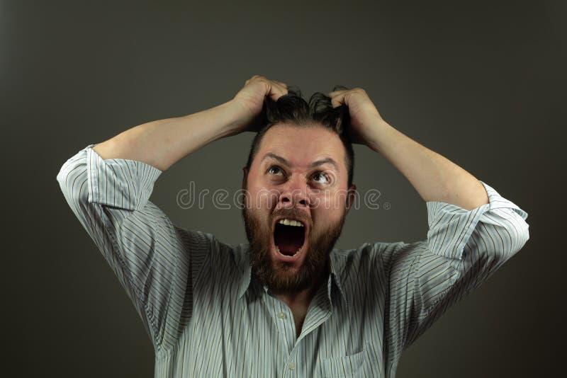 belastad aff?rsman Caucasian man som yeling och drar hår Ilsken affär royaltyfri fotografi
