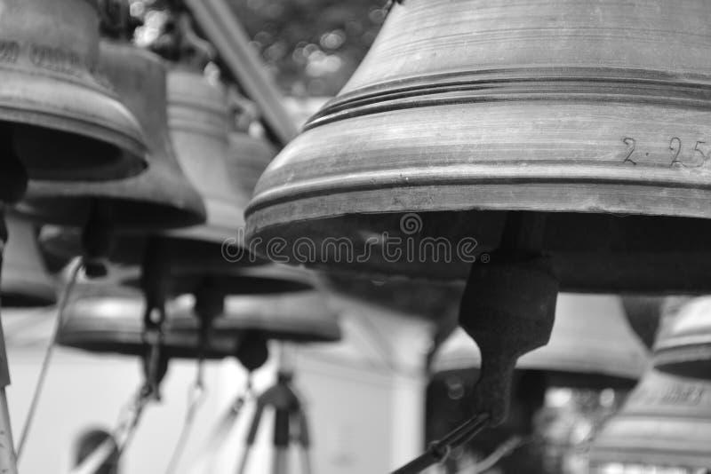 Belces se cierran para arriba en blanco y negro fotos de archivo