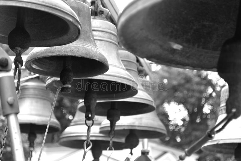 Belces se cierran para arriba en blanco y negro fotografía de archivo