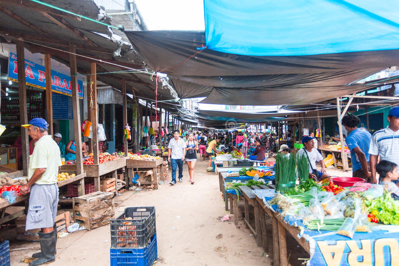 Belen市场,伊基托斯,秘鲁 库存图片