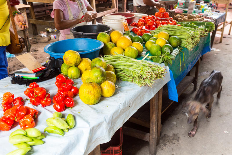 Belen Market Iquitos, Peru royaltyfria foton