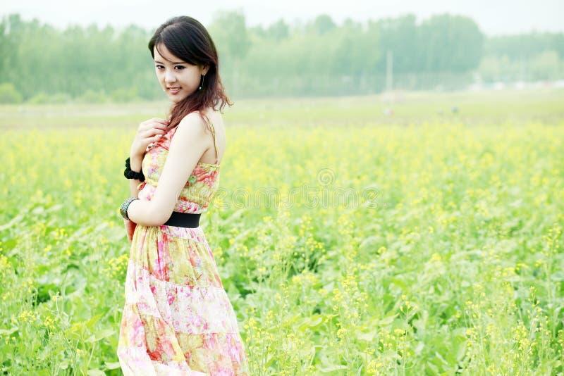 Beleza asiática no campo da violação imagens de stock royalty free