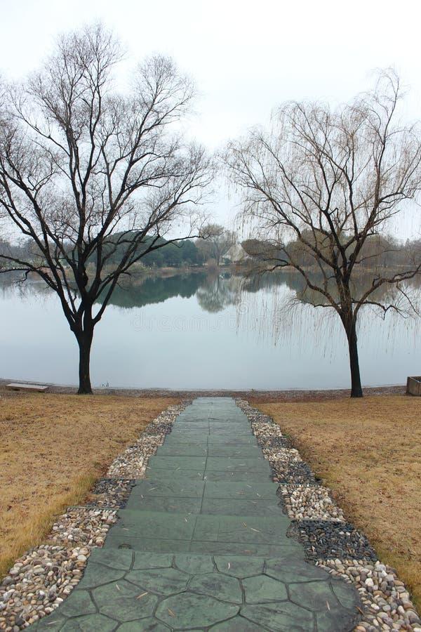 Beleza da beira do lago imagem de stock royalty free