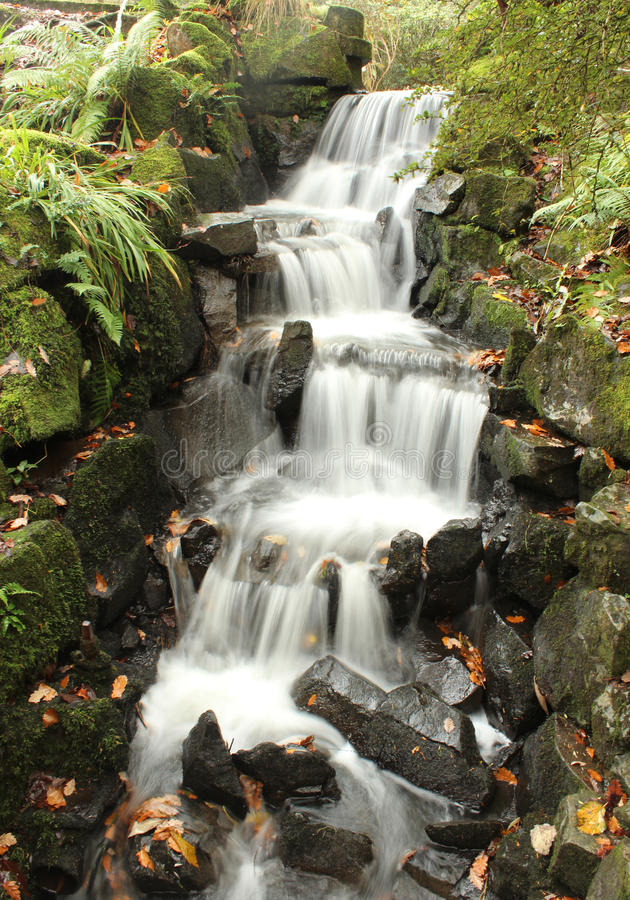 Beleza da cachoeira foto de stock royalty free