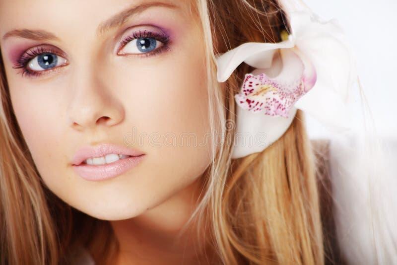 Beleza da orquídea imagem de stock royalty free