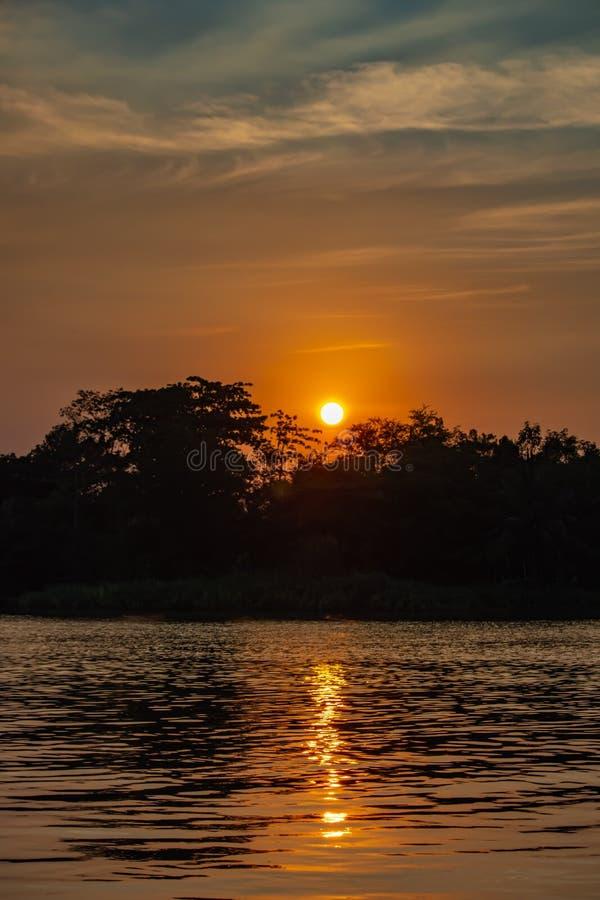 A beleza de um por do sol atrás de uma árvore e de um céu alaranjado fotografia de stock royalty free