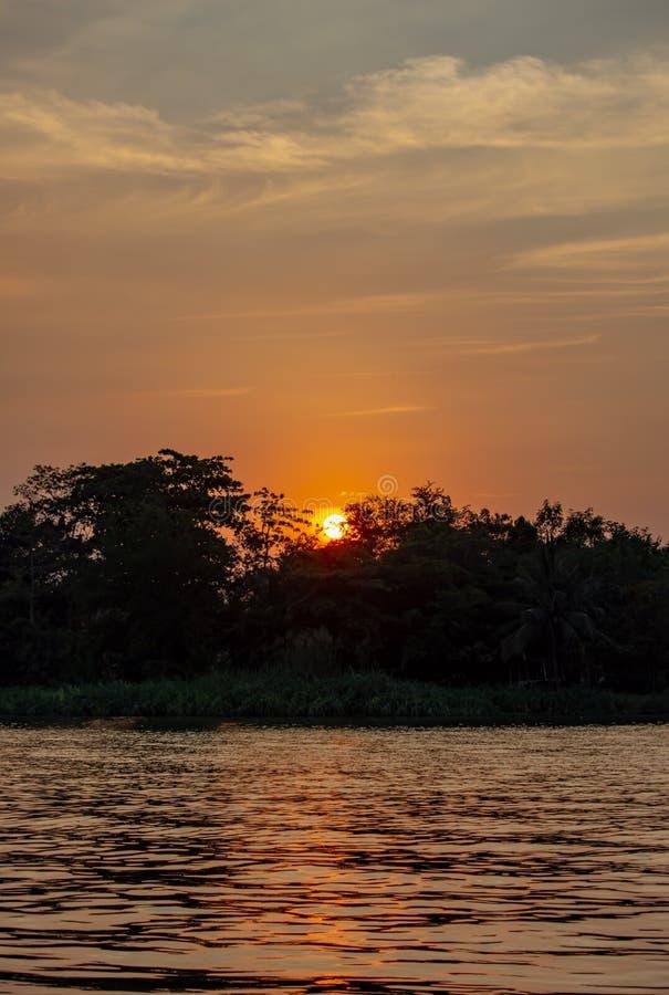 A beleza de um por do sol atrás de uma árvore e de um céu alaranjado imagem de stock