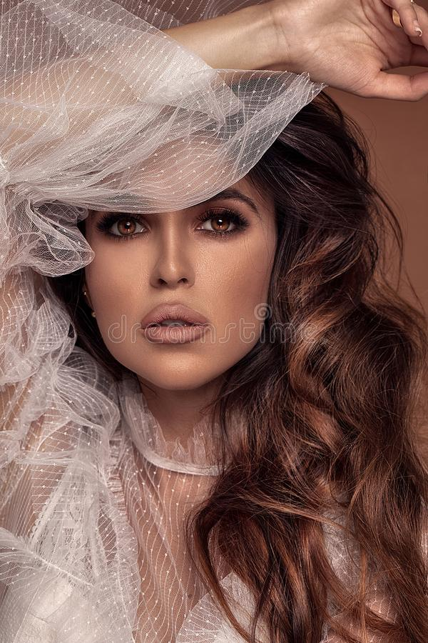 Beleza disparada da mulher triguenha foto de stock royalty free