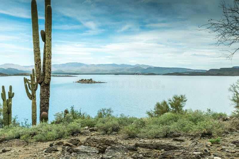 A beleza diversa da paisagem do deserto do Arizona fotografia de stock royalty free