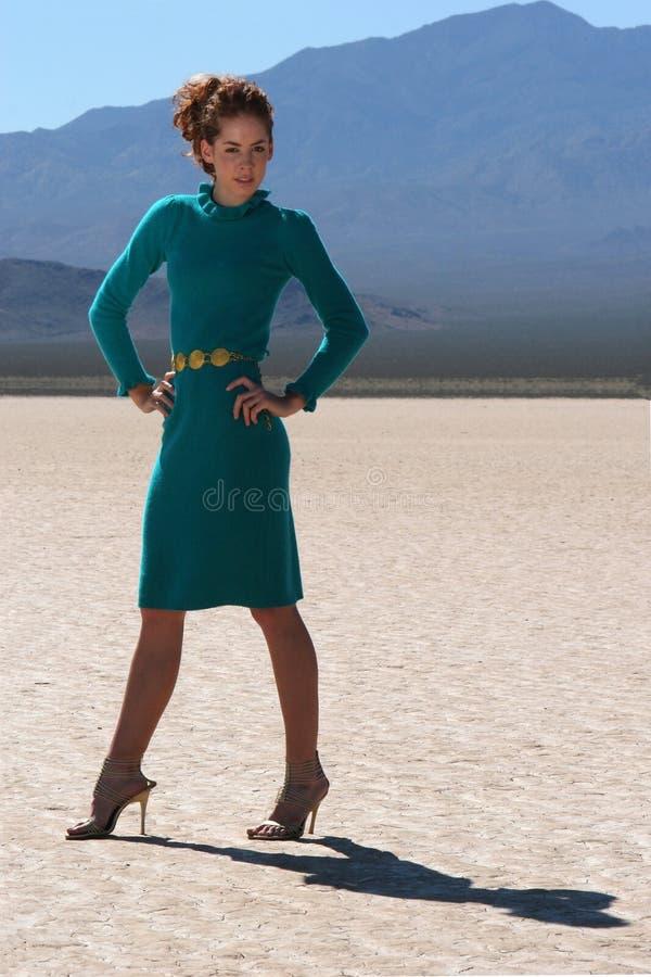 Beleza do deserto foto de stock