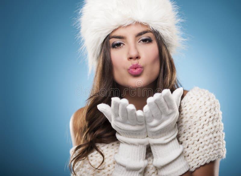 Beleza do inverno imagem de stock royalty free
