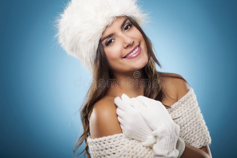 Beleza do inverno fotografia de stock royalty free