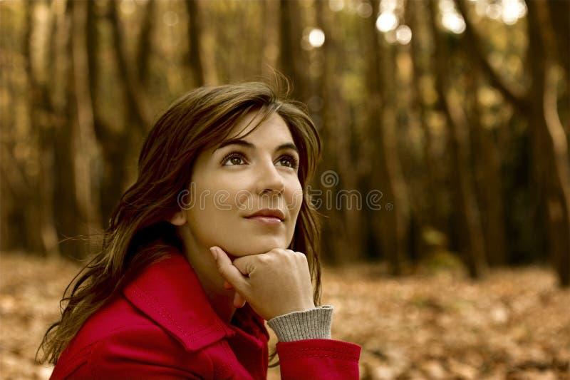 Beleza do outono foto de stock royalty free