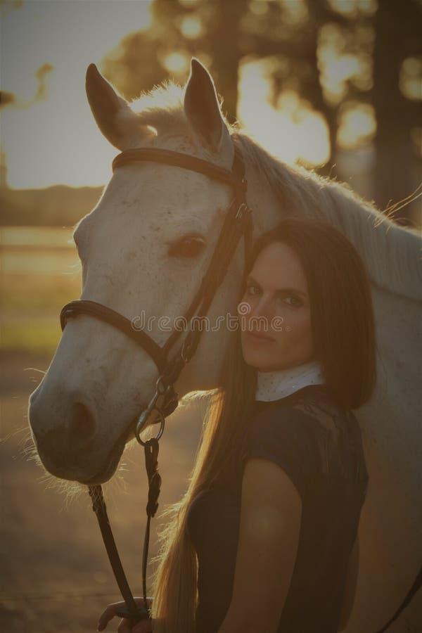 Beleza do por do sol fotografia de stock royalty free