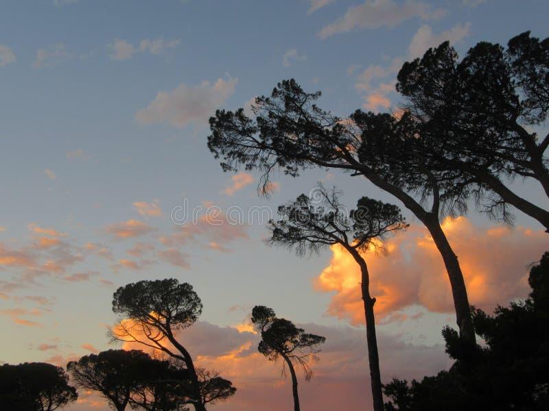 Beleza do por do sol em reflexões da nuvem fotos de stock