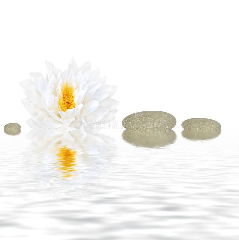 Beleza do zen fotografia de stock