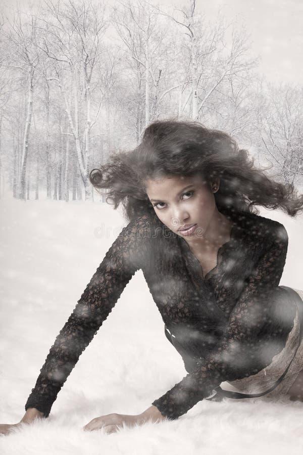 Beleza e neve foto de stock royalty free