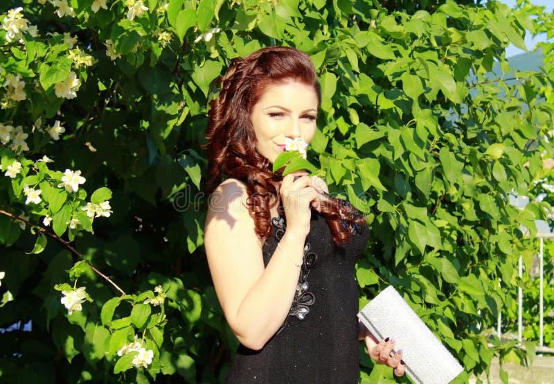 Beleza em um jardim foto de stock royalty free