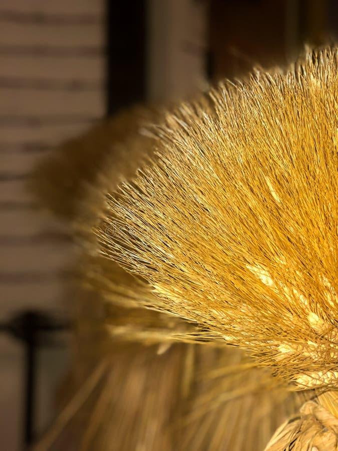 Beleza escondida do feno dourado foto de stock