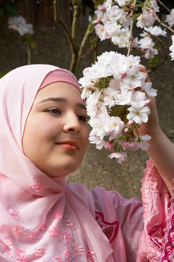 Beleza na cor-de-rosa imagens de stock