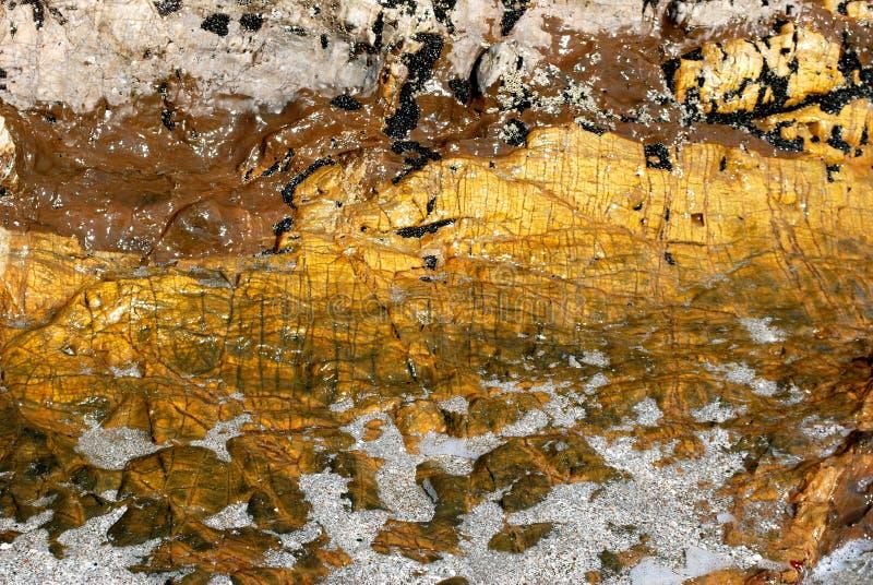 Beleza na rocha imagens de stock royalty free