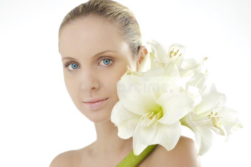 Beleza natural com Amaryllis imagens de stock royalty free