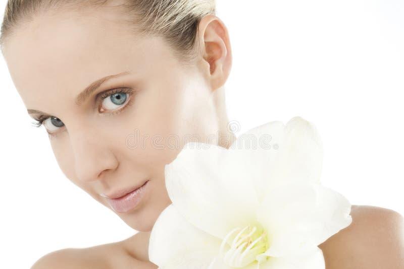 Beleza natural com Amaryllis imagens de stock