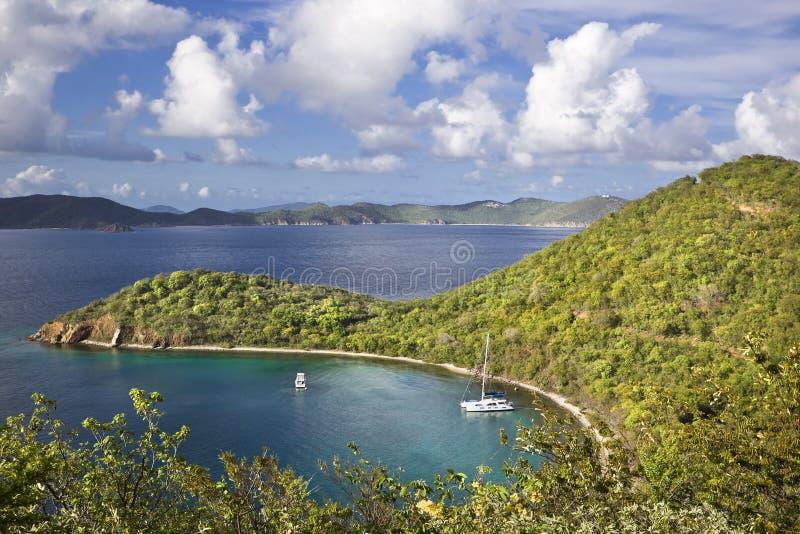 Beleza nos tropics fotos de stock