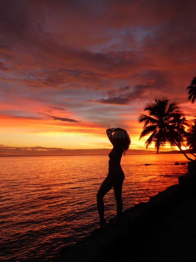 Beleza tropical imagens de stock