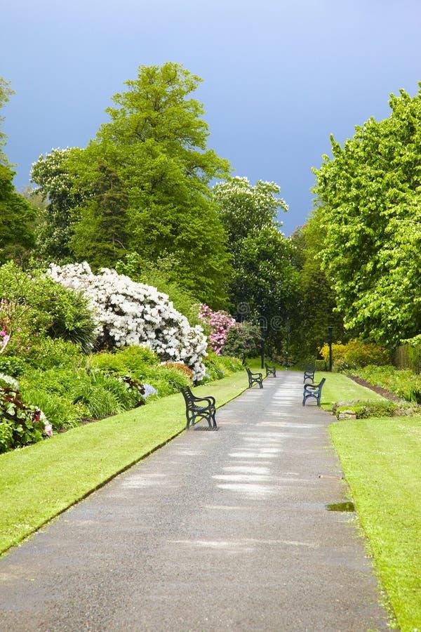 Belfast Botanic Gardens royalty free stock photos