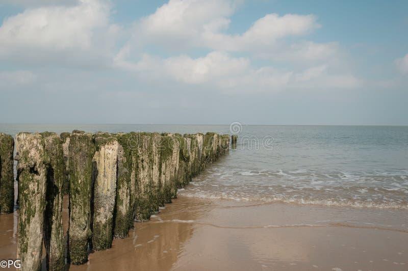 Belga wybrzeże fotografia royalty free