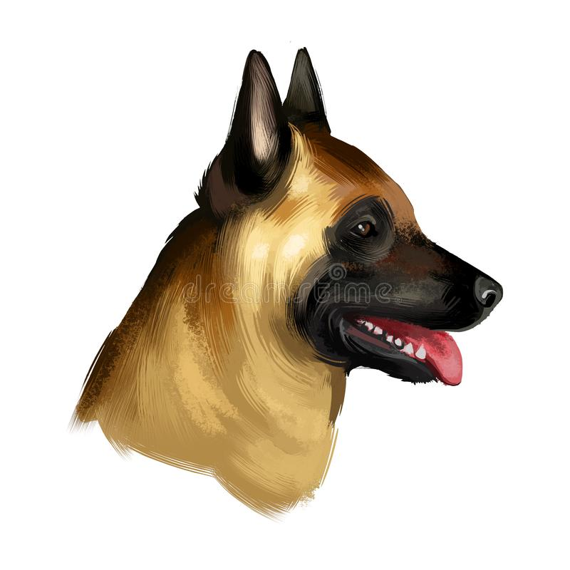 Malinois coloring page | Coloring pages | Dog coloring book ... | 800x800